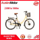 350W bici eléctrica de la montaña E con la batería ocultada E Fatbike