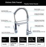 Robinet/taraud/mélangeur simples grands modernes de bassin de cuisine de traitement/trou