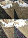 Più nuove mattonelle piene naturali della porcellana del marmo del corpo del materiale da costruzione di Foshan