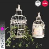 Antieke Sjofele Elegante Set/2 die Birdcage hangen