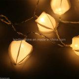 Décor de chambre à coucher de Noël de lumières de Noël de fleur de quirlandes électriques d'étoile de chaîne de caractères de DEL