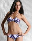 De dames vormen Bikini 80% Nylon 20% Spandex (YD10580)