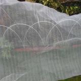 Schermo di tessitura della prova di /Insect del setaccio a maglie della prova dell'insetto di agricoltura
