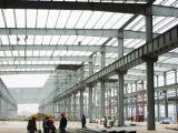 Taller ligero de la estructura de acero para el centro logístico (KXD-014)