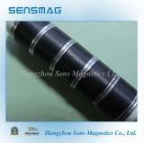 De permanente Magneet van de Maag van de Koe, de Magneten van het Ferriet, Ceramische Magneten