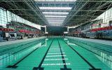 Struttura d'acciaio prefabbricata della Lungo-Portata per la piscina (SSW-009)