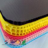 El divisor plástico acanalado sube a las hojas del separador de las pistas de la capa de las pistas de la capa de los PP