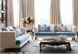 新しい古典的なLiviing部屋のソファー