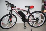 26インチ21の速度の電子マウンテンバイク、MTBの電気バイクの製造(YK-EB-017)