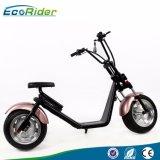 세륨과 RoHS 형식 Citycoco/Harley 스쿠터 2 바퀴 전기 스쿠터