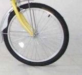 26 '' بالغ درّاجة/درّاجة/مدينة درّاجة لأنّ بنت ([ش-كب019])