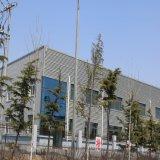 Gruppo di lavoro prefabbricato della struttura d'acciaio del fornitore professionista (KXD-CH13)