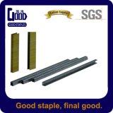 Wire galvanizado U Type 9n Framing Staples