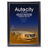Frame van de Affiche van het Frame van het aluminium het Onverwachte Muur Opgezette