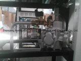 Étalages simples de la pompe deux de poste d'essence de pétrole