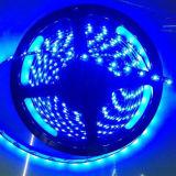 6color 5m 60LEDs/M 5050SMD Waterproof LED Strip Light