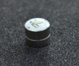 Boucles d'oreille électroluminescentes de goujon d'aimants de Zircon