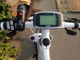 Motore elettrico MTB della bici 8fun all'interno della batteria di litio nel telaio