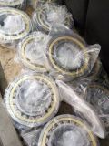 Cage di rame Bearing Product Cylindrical Roller Bearing con Brass Cage