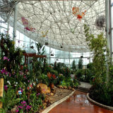 Internos Eco-Friendly crescem a barraca /Greenhouse