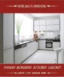 Armário de cozinha novo do projeto 2016 (ZS-04)