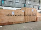 Macchina diretta di fabbricazione di carta del servomotore A4 della fabbrica (DKHHJX-1300)