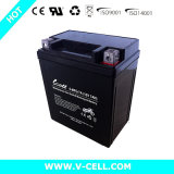 Bateria acidificada ao chumbo para a bateria da motocicleta do ciclo de motor 6-Mfq-7A 12V7.0ah