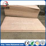 Okoume Gesichts-Pappel-Kern-Handelsfurnierholz für Grad der Dekoration-BB/CC