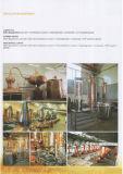 自家製のもの装置の円錐発酵槽(ACE-FJG-W2)