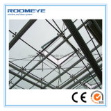 Roomeye Curtain Wall Point Systèmes de support Isolation Rideaux thermiques Mur en verre (RMCW-102)