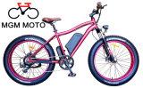 48V 500W 뚱뚱한 타이어 산 전기 자전거