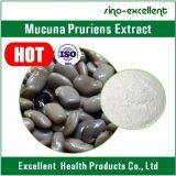 Extracto natural Levodopa 10-98% de Pruriens del Mucuna de la planta