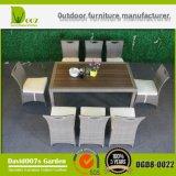 Cadeiras da mobília do jardim e tabelas/que jantam o jogo