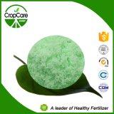 Engrais hydrosoluble de la qualité 20-20-20+Te