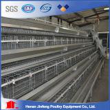 Gabbia del pollo di strato dell'azienda avicola in Cina