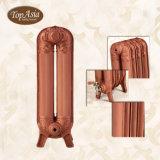 Le radiateur de chauffage populaire le plus neuf de fer de moulage de décoration de famille du plus défunt type