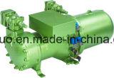 Il compressore della vite di Bitzer, compressore di refrigerazione marca a caldo Csh8553-110y