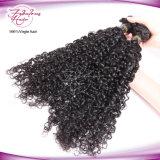 Heißes verkaufendes lockiges indisches Menschenhaar Remy Jungfrau-Haar