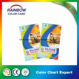 Catálogo de tarjeta profesional del color de la pintura de la pared de la configuración