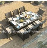 Rattan do pátio da tabela de 8 Seater mobília ao ar livre do jardim do grande