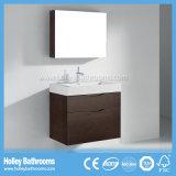 Hotel Popular de accesorios de baño con el espejo del gabinete y 2 cajones (BF359D)