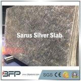 Lastre d'argento incluse del granito di Sarus per i controsoffitti della cucina
