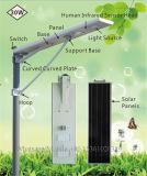 30watt BV 세륨 증명서를 가진 한세트 태양 LED 가로등
