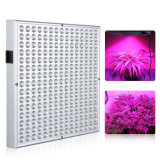 Plante à LED 45W Grow Light for Houseplants Fleur et fruits