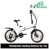 Dame Folding Electric Bicycle mit Fabrik-Preis