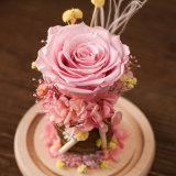 Fiore naturale Handmade per il regalo di compleanno di giorno del biglietto di S. Valentino