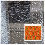Reticolato esagonale rivestito della rete metallica con il prezzo competitivo