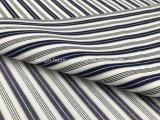 Il filato ha tinto la banda mescolata Tencel Fabric-Lz8171 del cotone