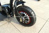 [350و] [500و] صرة محرّك كهربائيّة درّاجة ثلاثية 3 عجلة [سكوتر] كهربائيّة