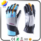 PVCによって点を打たれる手袋の綿の手袋